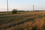 Ziemia rolna Kamień Słubice