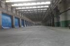 Powierzchnia na hali produkcyjno magazynowej do wynajęcia od 300m2 do 30 000m2