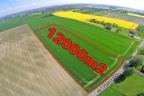 Teren inwestycyjny w Żorach niedaleko DK81. Bardzo atrakcyjna cena – 69zł/m2