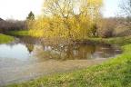 Gdańsk- jakby ogród botaniczny- 2,3 ha pod szeregowce do 12 m. i 1- rodzinne