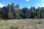 Działka rekreacyjna 7,5 ha, dowolna powierzchnia, od 8zł, Sekłak, woj. mazowieckie, pow. węgrowski