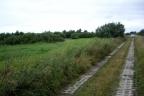 Pilnie sprzedam działkę rolną 4,98 ha Objazda, gm. Ustka