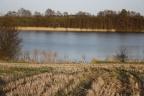 Działki siedliskowe przy jeziorze