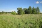 Teren 1,73 ha pod zabudowę mieszkaniową