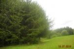 Działka siedliskowa, Pomlewo