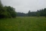 Bieszczady sprzedam 66 ha (15.000zł/ha)