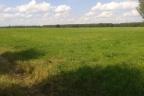 Teren pod farmę fotowoltaiczną