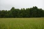 Grunt o powierzchni 41,6 ha w Muławkach pod Kętrzynem.