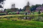 Kupię siedlisko/młyn/stajnie/10 hektarów nad wodą w Mazowieckim, Łódzkim lub Kujawsko-Pomorskim