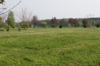 Działki budowlane oraz działka budowlana ze stawem niedaleko Wrocławia