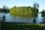 Sierakowice-5 km. 2 ha z WZ na dom 1- rodz. 110 m własnego brzegu jeziora