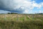 Ziemia 28 ha w 1 kawałku okolice Ustki