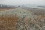 Działka 5km od Lotniska w Pyrzowicach - pod budowę domów, parking