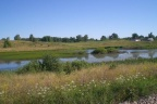 Okazyjnie sprzedam interesujące grunty siedliskowe - 40ha pod Olsztynem