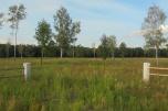 Puszcza Mariańska, tani, duży teren inwestycyjny 54 ha