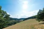Do sprzedania 2,448 ha gruntu pod zabudowę jednorodzinną