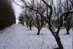 Gdańsk, pod ekskluzywne, strzeżone osiedle, media, ogrodzona