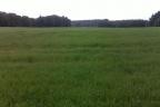 170 ha ziemi rolnej zachodniopomorskie oddam w dzierżawę