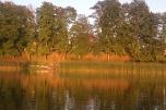 Piękne miejsce nad jeziorem - turystyka, gastronomia lub inny cichy biznes