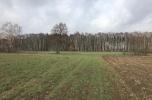 Działka 3 ha pod zabudowę jednorodzinną, przylegająca do lasu, w urokliwej okolicy - Borówno / Nekla k. Bydgoszczy - bezpośrednio