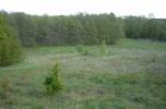 Działka, las i jezioro 34100 m2 (Gniezno)