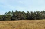 Działka siedliskowa przy lesie 7400m2 70000zł