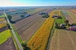 Gospodarstwo, grunt rolny gmina Stawiszyn