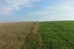 Gospodarstwo rolne na Suwalszczyźnie
