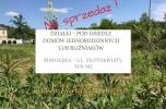 Grunt deweloperski-pod małe osiedle - ponad 5000m2 Zielona Białołęka