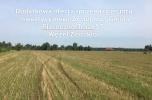 Grunt gm. Piaseczno, woj. mazowieckie,  47000 M2, MPZP, mieszkaniowo-usługowa