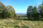 Las w Opawie, gmina Lubawka