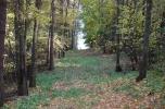 Mazury Stare Juchy pow. Ełk grunty, działki z dojściem do jeziora położona przy lesie