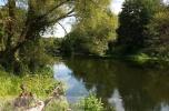 Sprzedam działkę 3000 m2 w okolicy Golubia Dobrzynia nad rzeką Drwęcą