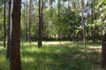 Sprzedam działkę leśną w trakcie przekwalifikowania