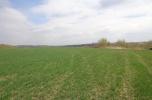 Sprzedam działkę rolną w okolicach Lwówka Śląskiego
