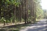 Sprzedam działki leśne 2 km od Zegrza