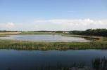Sprzedam gospodarstwo 21 ha, z prywatnym jeziorem, stawami i lasem Idealne na agroturystykę, łowisko