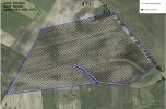 Sprzedam grunt pod fotowoltaika 55 ha oraz inne grunty posiadam