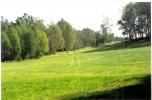 Sprzedam nieruchomość gruntową 11 ha na terenie Wzniesień Łódzkich