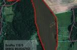 Sprzedam ziemię rolną, w obrębie Wilkoszyce, gmina Chojna
