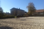 Stadnina koni, gospodarstwo rolne 106 ha