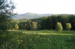 Szklarska Poręba 2,17 ha