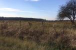 Tuły – dzierżawa ziemi rolnej