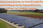 Wydzierżawię grunty na terenie całej Polski
